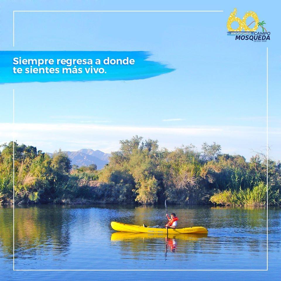 Campo Mosqueda 04